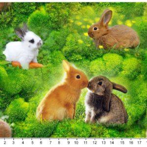 Nuttede kaniner