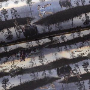 Bomuldsjersey med naturprint : GOTS