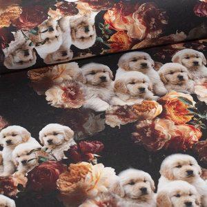Bomuldsjersey med nuttede hundehvalpe : GOTS